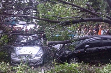 Victims of fallen tree, Yogyakarta residents seek crowdfunding support for treatment