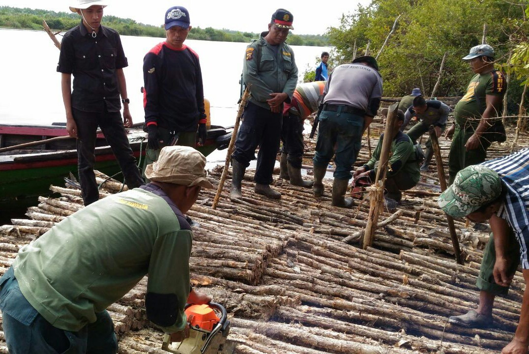 Indonesia thwarts illegal logging in South Sumatra