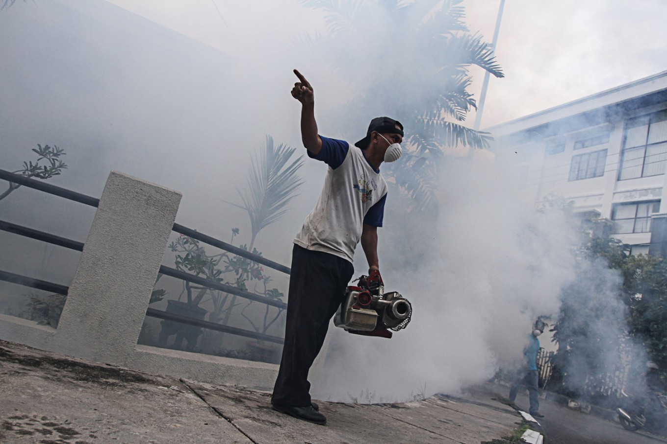 Jambi sees high number of dengue cases