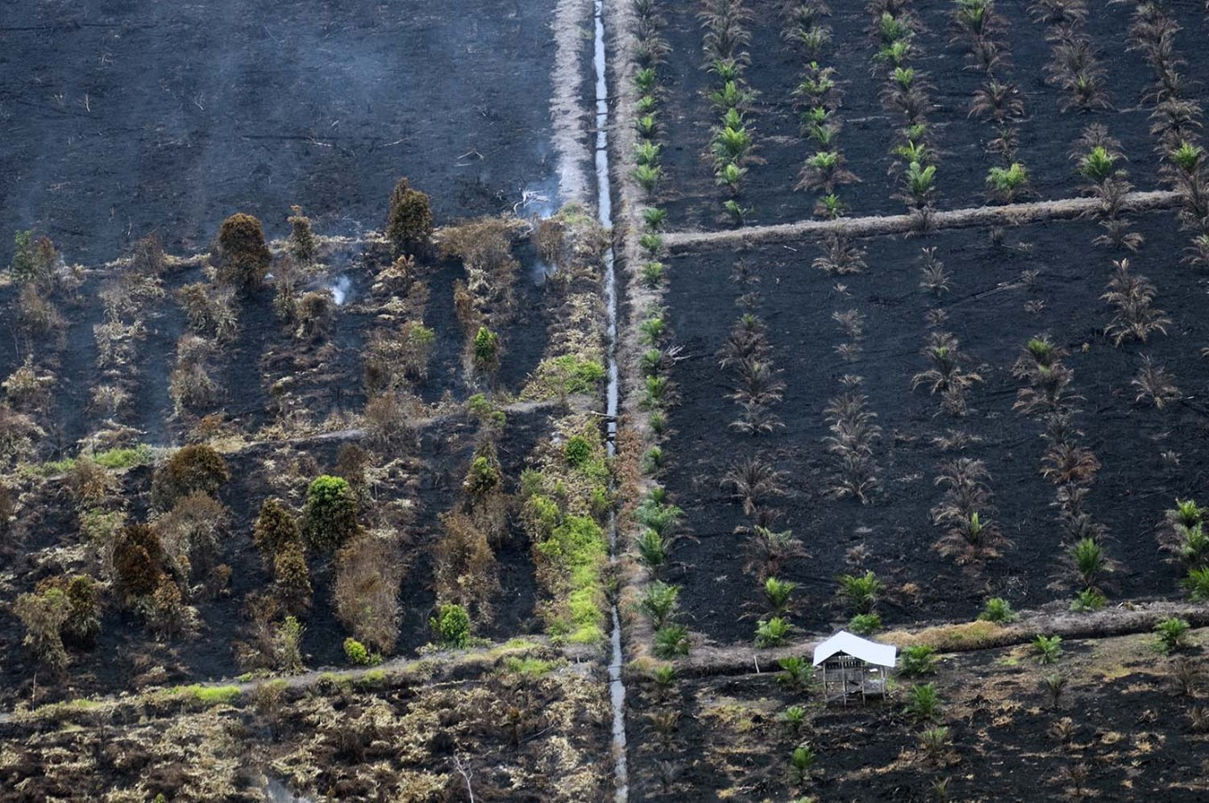Fires burn 64 hectares of land in West Aceh