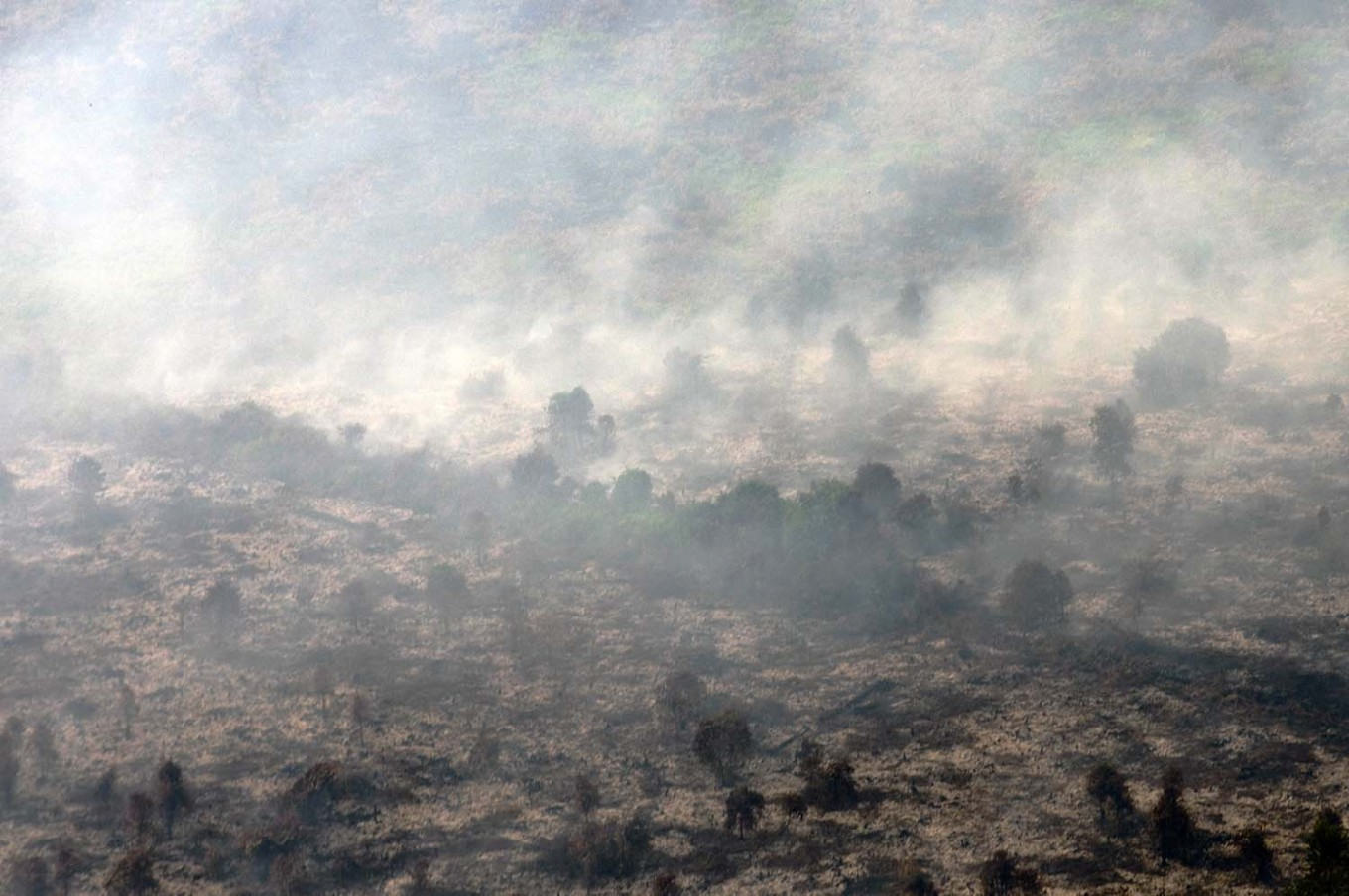 Jambi gets Rp 4 billion for land and forest fire prevention