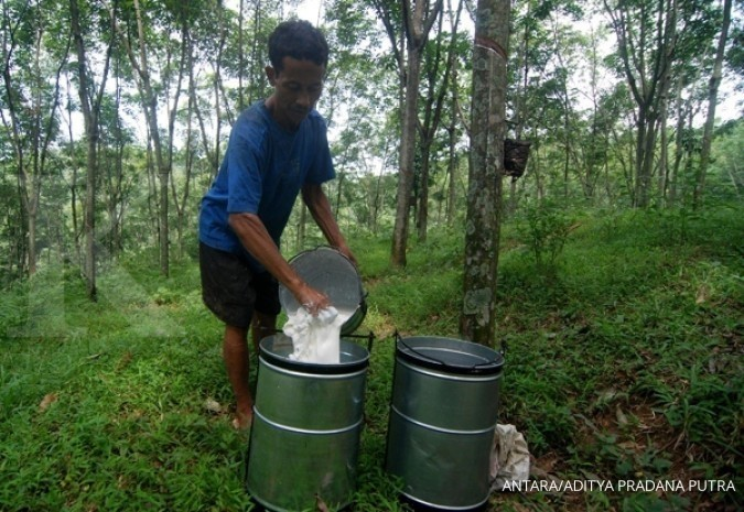 Rubber prices rise thanks to export restrictions: Trade Ministry
