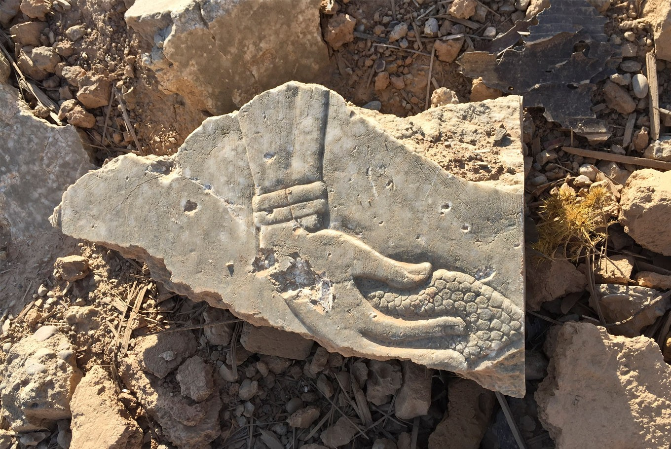 Iraq hopes to reclaim heritage lost to Islamic State group