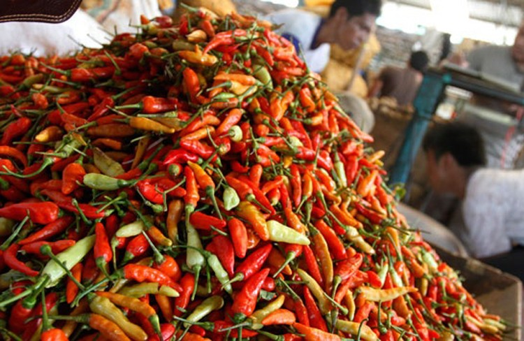 Efforts to bring down chili price stepped up