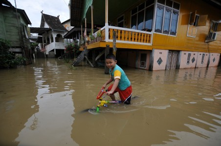 Deforestation leading to Jambi flooding, warns green group