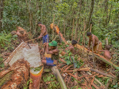 West Papuan villages awarded forest permits