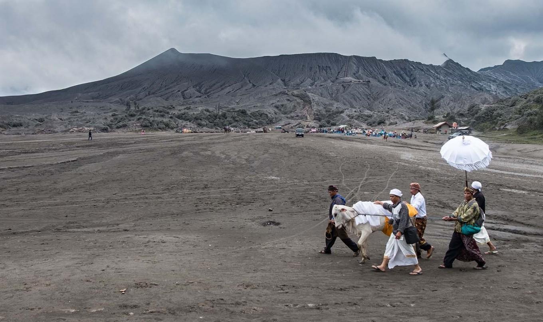 Some men lead a cow around the Luhur Poten temple in Mount Bromo. JP/Tarko Sudiarno