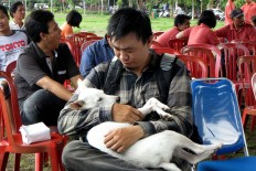 A man holds his dog before it is vaccinated during a free rabies vaccination and neutering program at Lumintang Field, Denpasar, on Nov. 24, 2016. JP/ Zul Trio Anggono