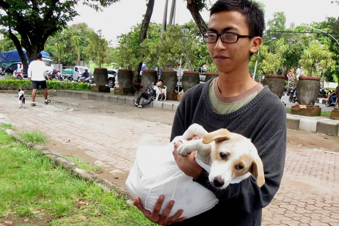 A man carries his dog before having it vaccinated during a free rabies vaccination and neutering program at Lumintang Field, Denpasar, on Nov. 24, 2016. JP/ Zul Trio Anggono