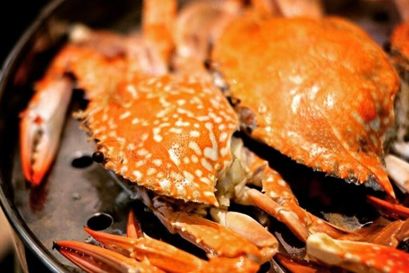 Five places for seafood lovers to go in Pantai Indah Kapuk