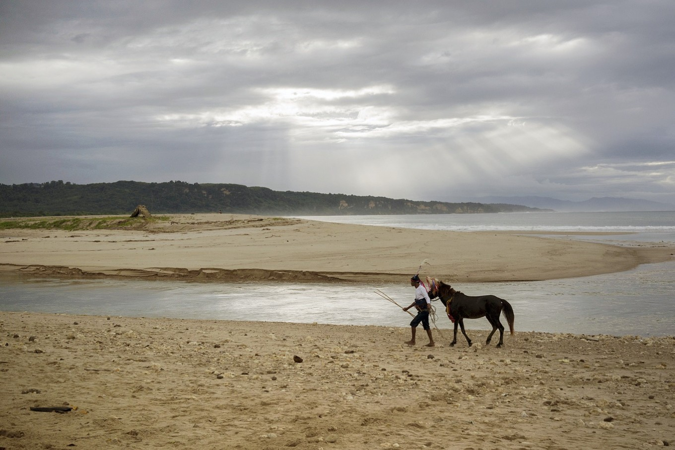Morning walk: A horse and its rider walk together alongside Wanokaka Beach ahead of the ritual.