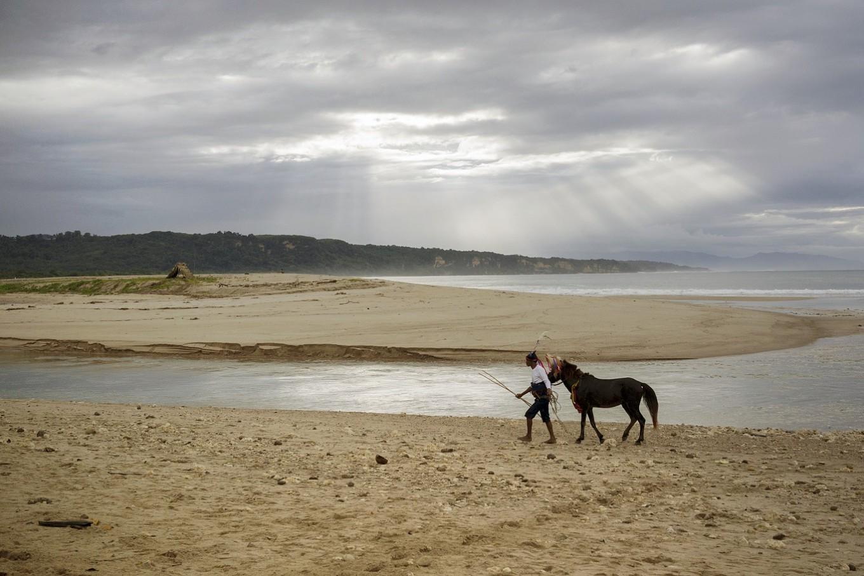 Morning walk: A horse and its rider walk together alongside Wanokaka Beach ahead of the ritual.