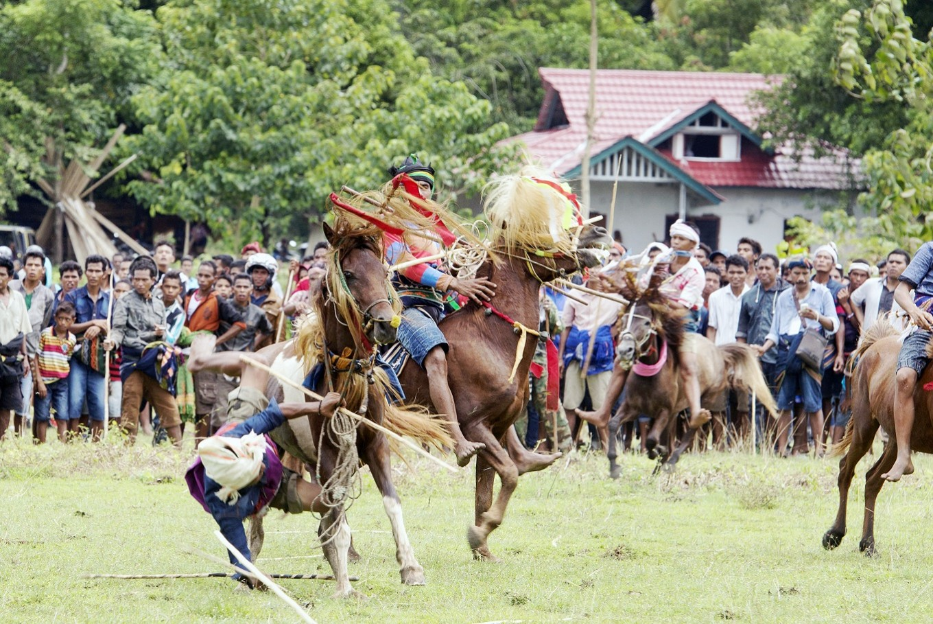 Dangerous: The ritual is conducted by throwing wooden spears at an opponent while riding a horse, and at times, accidents happen.