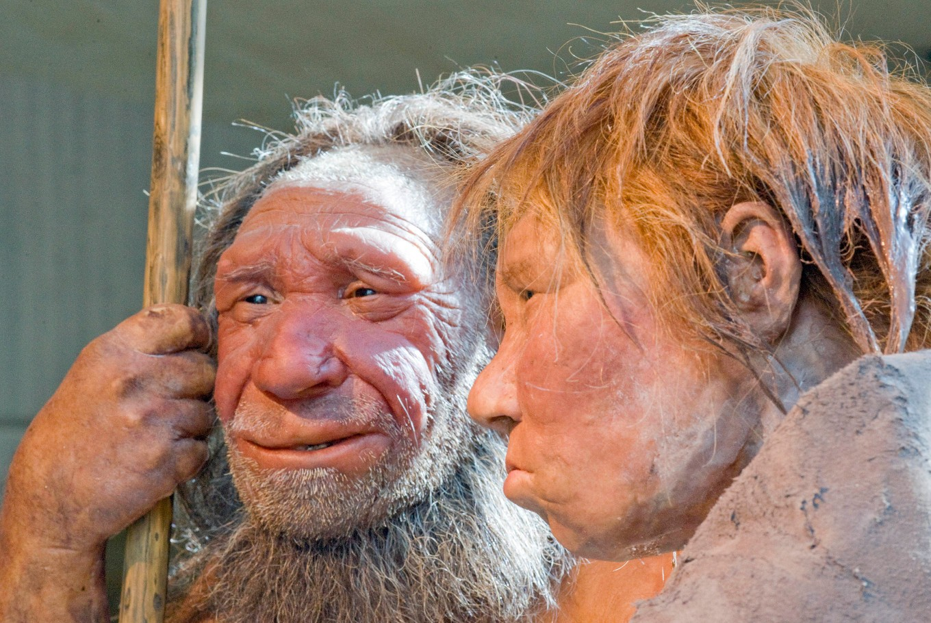 Stone Age cannibals: Hunting each other not worth the hassle
