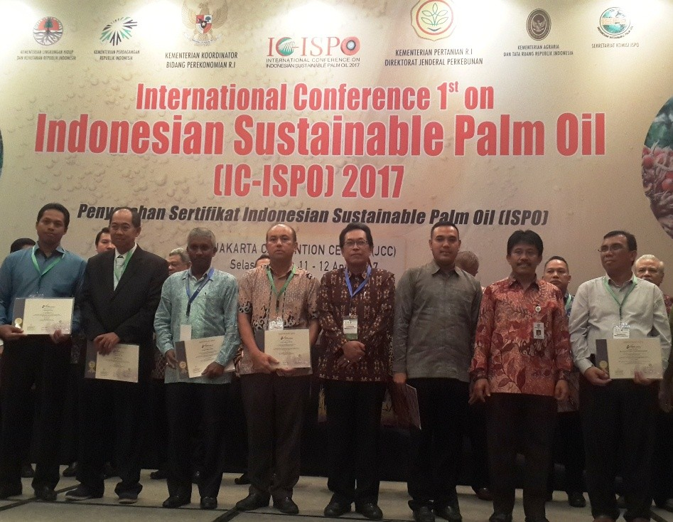 Only 12% of Indonesia's oil palm plantations ISPO certified