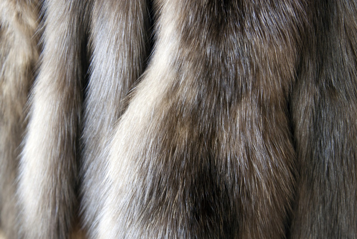 Real fur products marketed as fake in UK: Reports