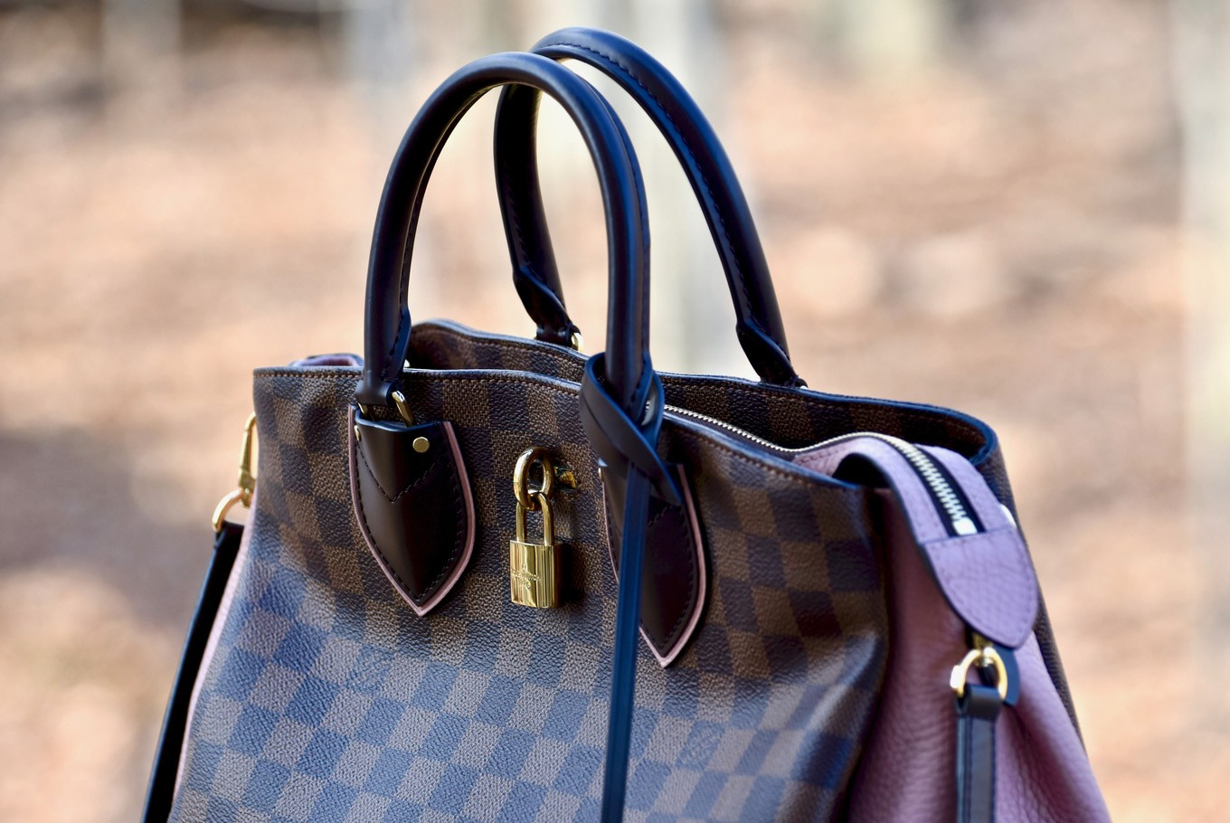 Used Louis Vuitton bags propel pawn-shop startup to IPO