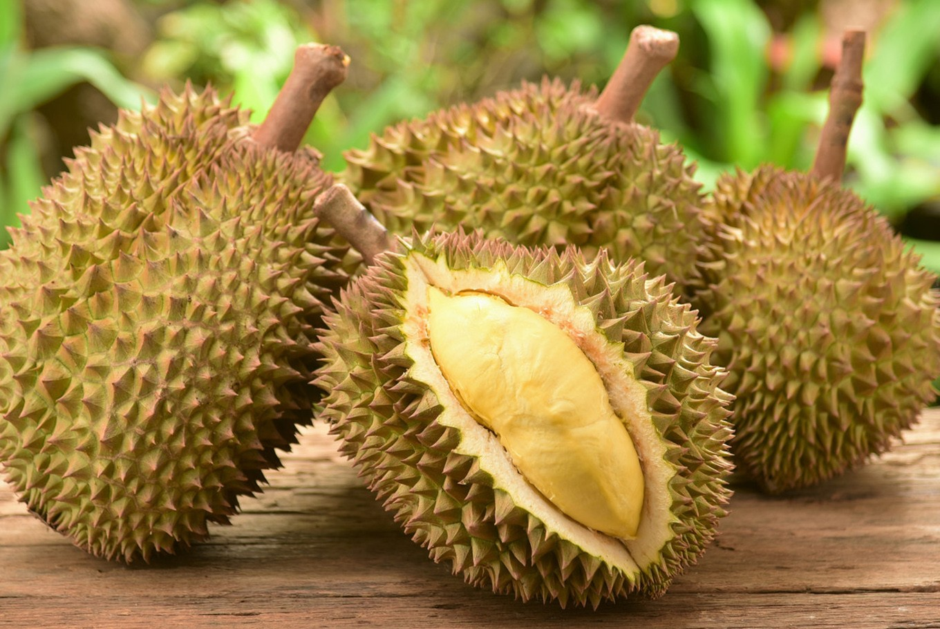 Smell of durian delays flight after passengers protest