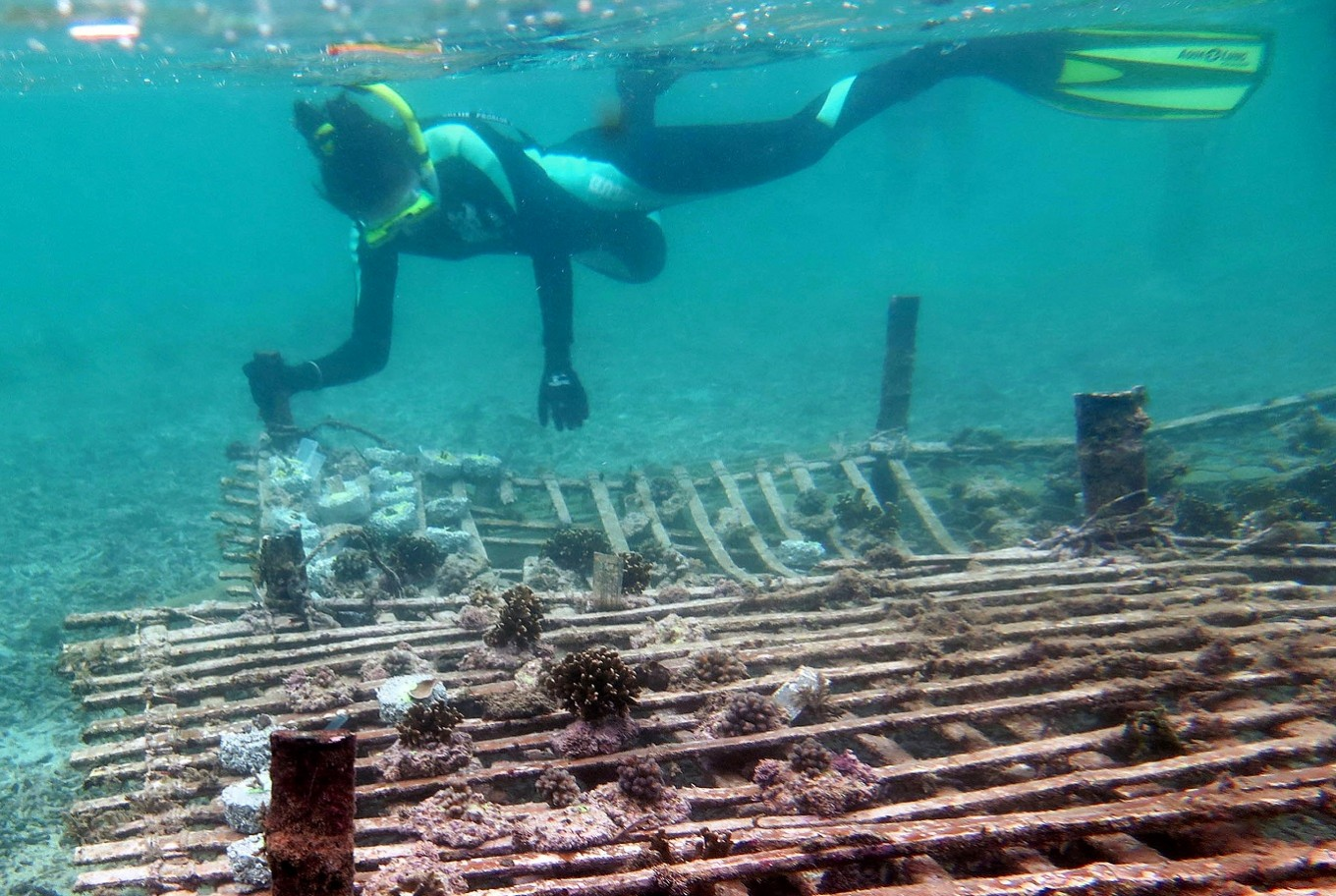 Study to challenge claim Indonesia second-biggest marine polluter