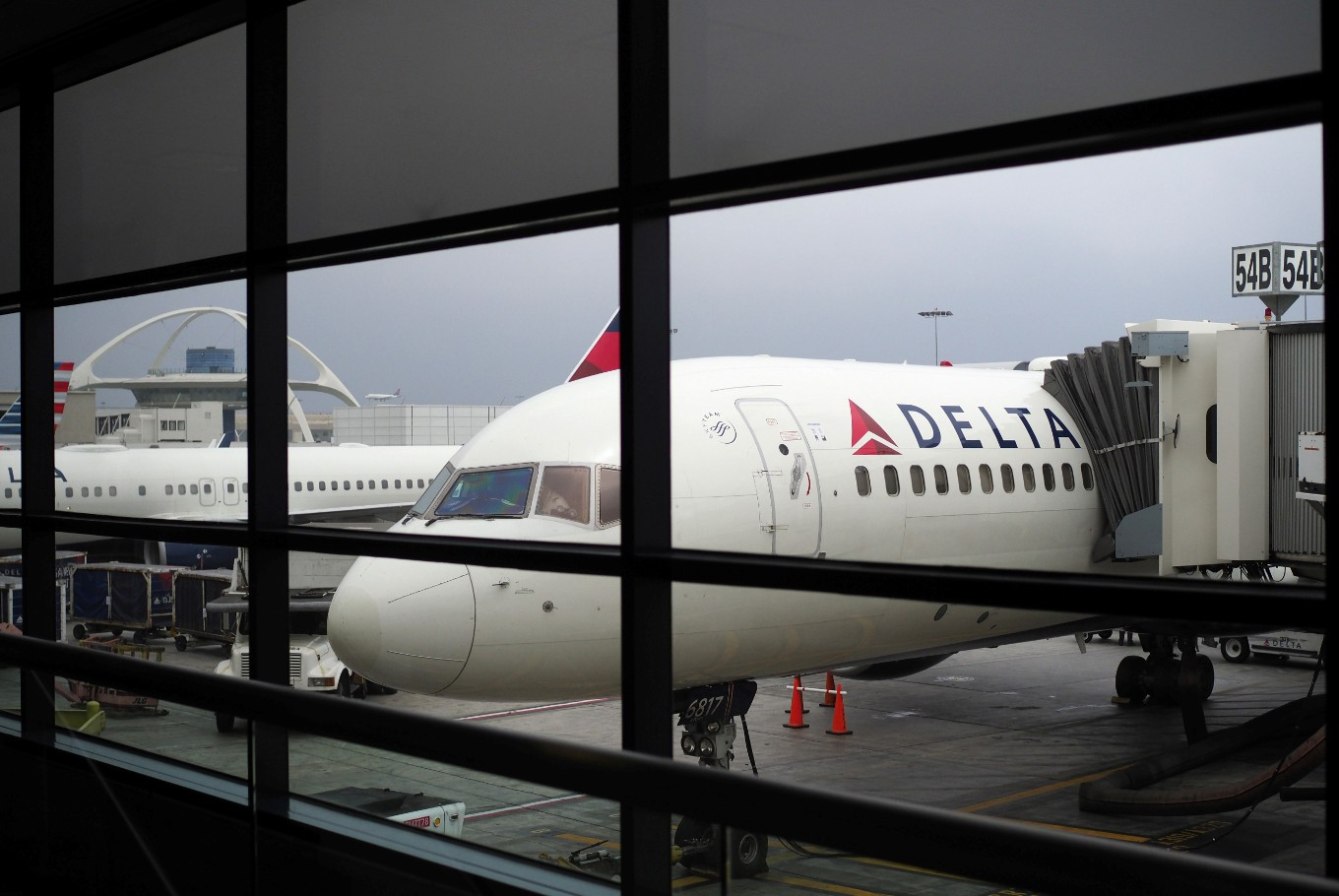 Delta Air Lines says no more support kittens, puppies on flights