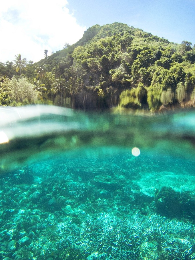 A shallow reef in Olele National Park, Gorontalo.