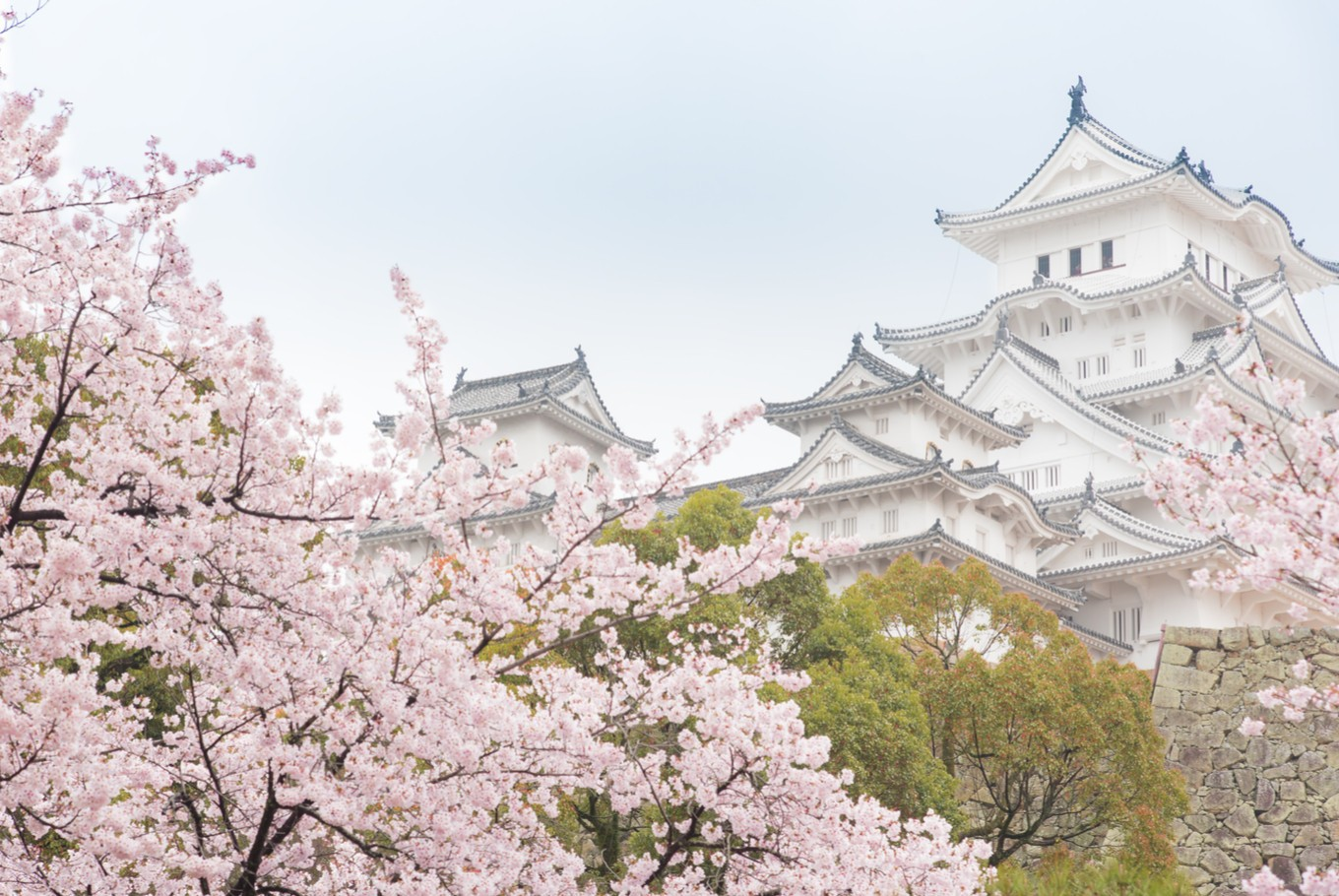 Osaka is Japan's new tourist hot spot for Asian visitors
