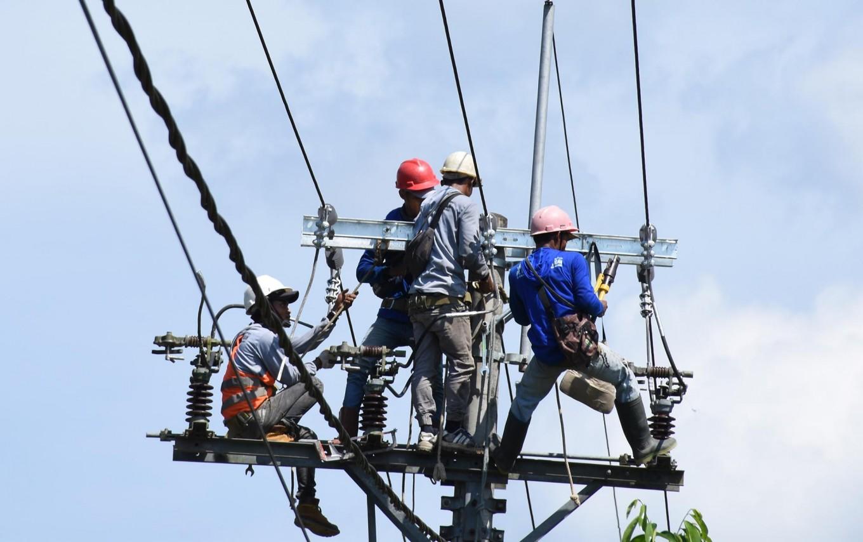 PLN merges East, South Kalimantan grids