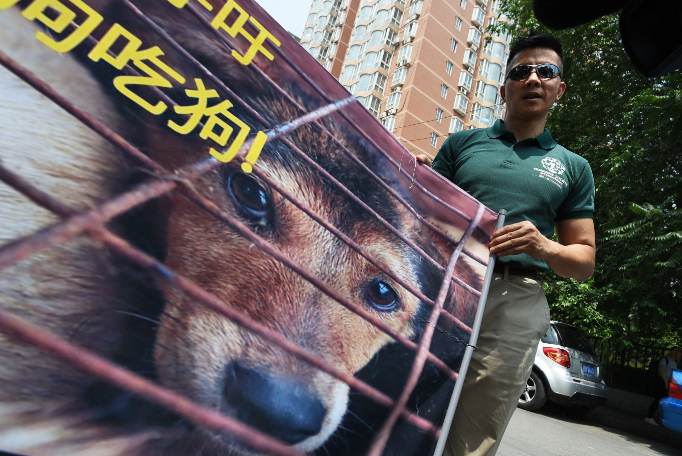 China dog meat fest opens as S. Korea goes the other way