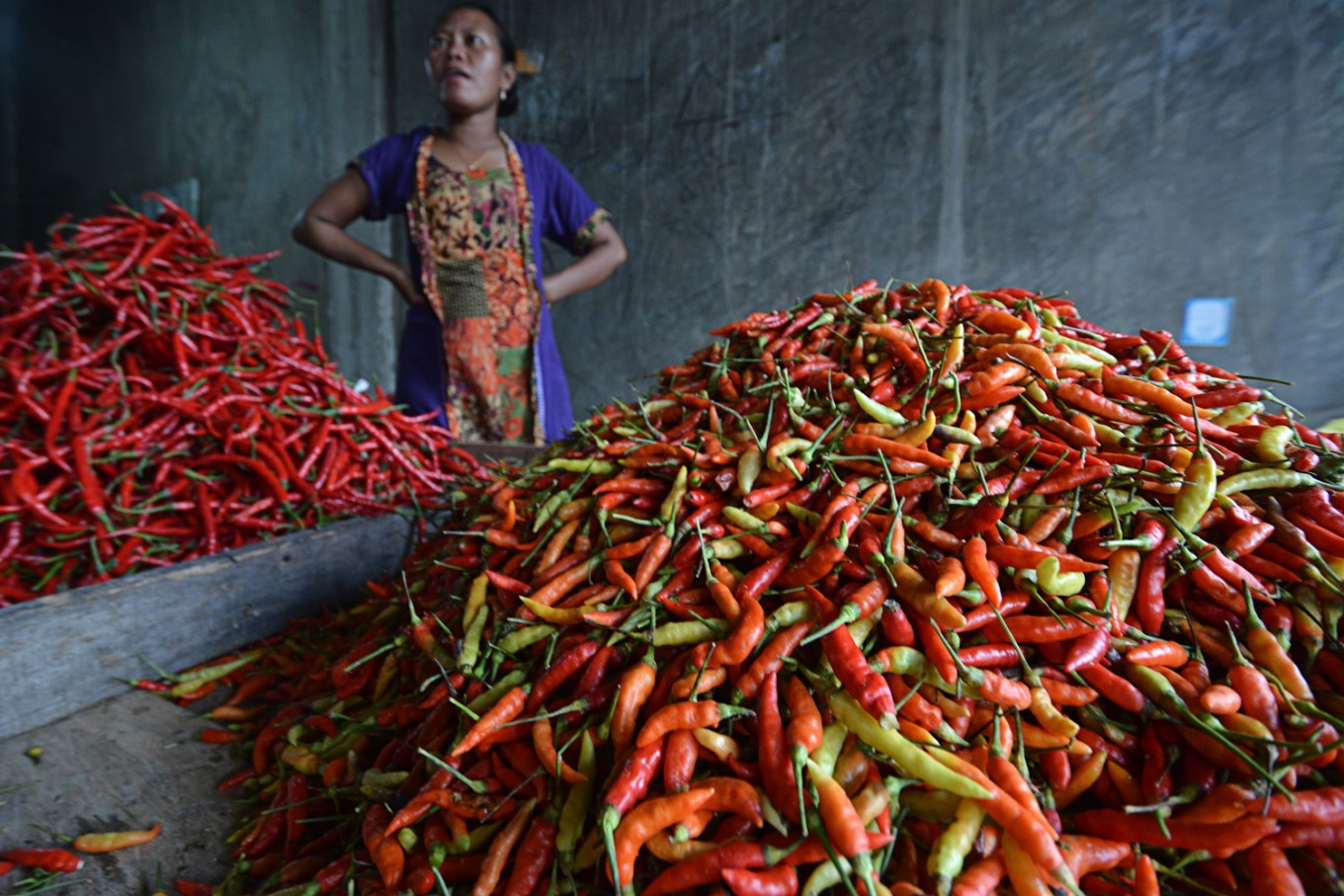 Police investigate chili wholesalers in Lombok