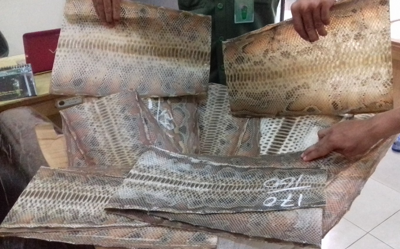 Illegal snake-skin trade thwarted in North Sumatra