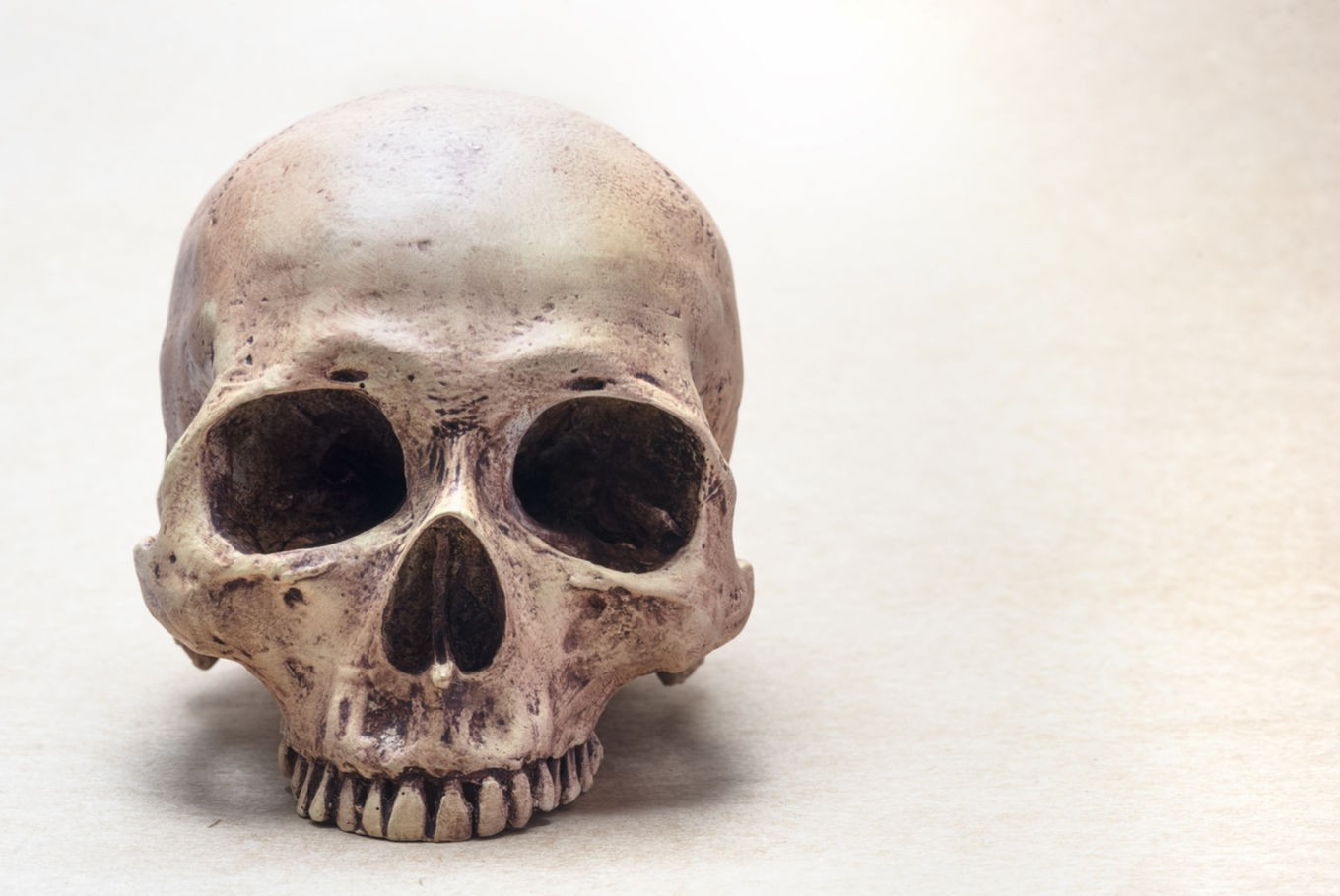 German accused of trying to smuggle human skulls from Papua