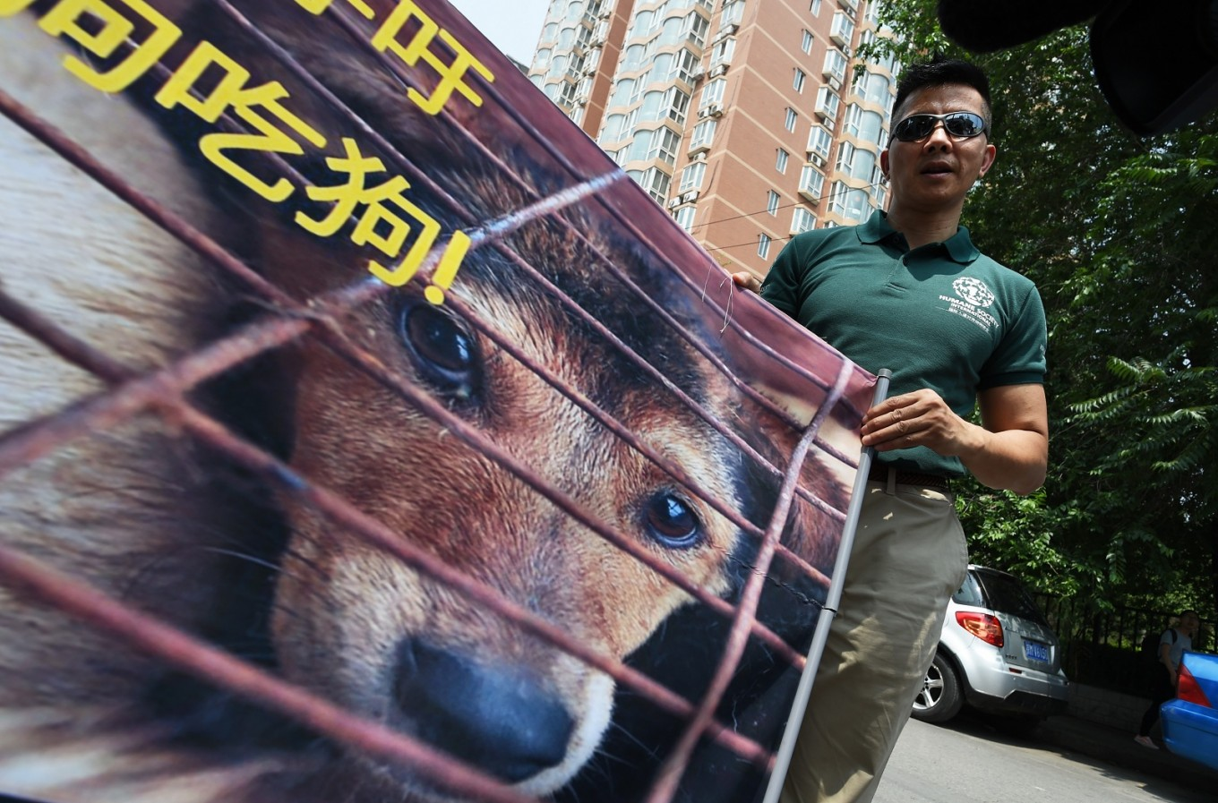 Dog meat farmers protest for survival rights in Seoul
