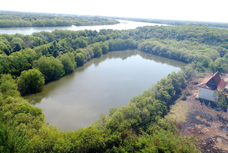 Sidoarjo to turn mud wasteland into tourist attraction