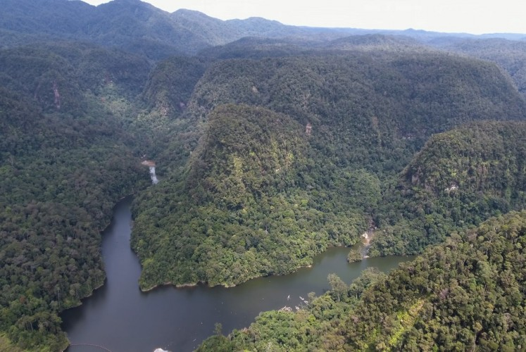 A large hydroelectrical project is planned right in the middle of the primary – and only – habitat for the Sumatran orangutan species that dwell in North Sumatra, along the Batang Toru river to the south of Lake Toba.