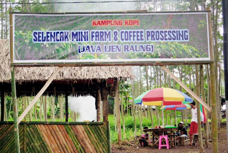 Selencak Mini Farm and Coffee Processing in Bondowoso