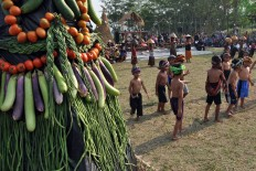 A Pala Gumantung offering is placed in the field after being paraded around the village. JP/Magnus Hendratmo