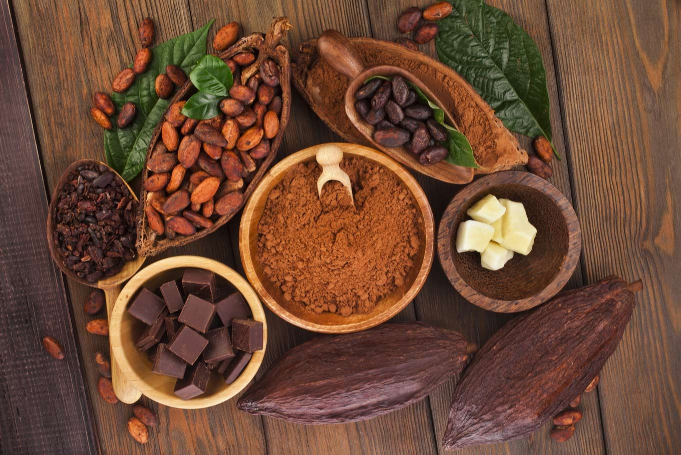 Promoting sustainable learning for cacao farmers