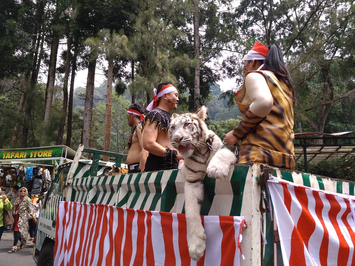 Taman Safari's animal parade pays tribute to Independence