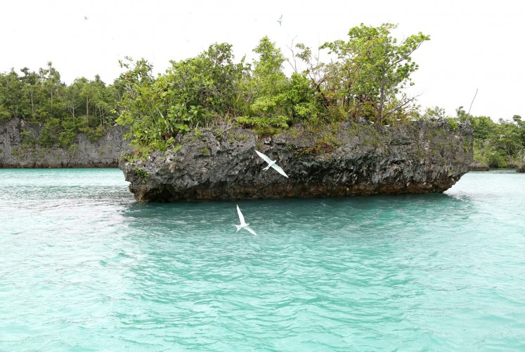Pristine: Bair Island from another angle. Many tourists compare the beauty of this island to Papua's famous Raja Ampat.