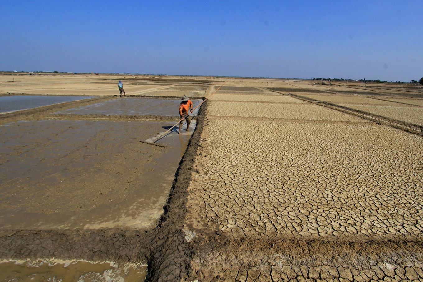 A farmer cultivates his salt field in Santing village, Losarang district, Indramayu regency, West Java, in May. Antara/Dedhez Anggara