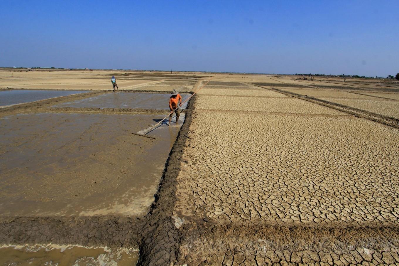 Salt producer association rejects 3.7 million tons of salt
