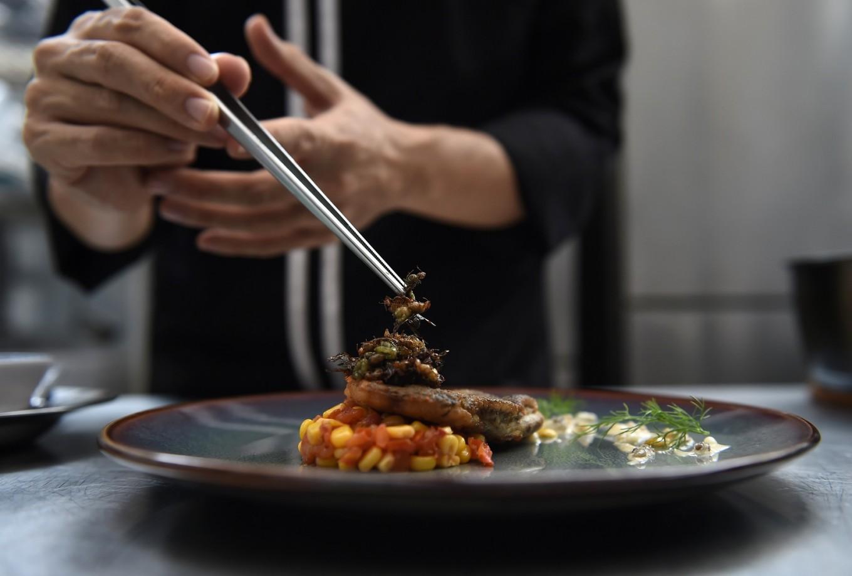Gourmet grub: Thai fine-diners explore insect cuisine