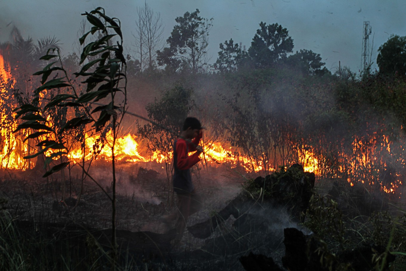 Five named suspects in Jambi land, forest fires