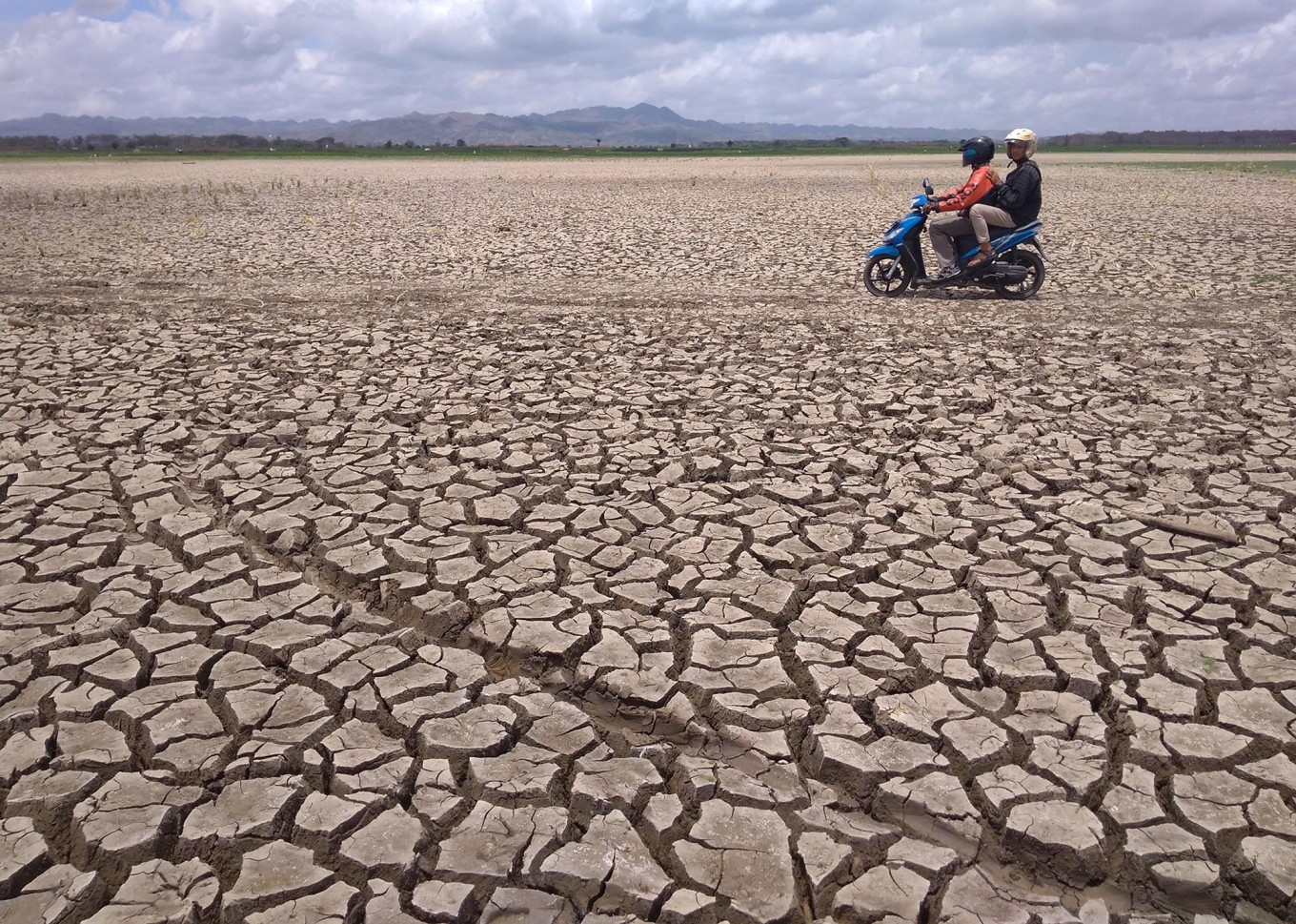 Dry spell persists in East Sumba as regency suffers 249 days without rain