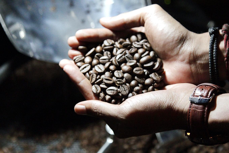 Nusantara Coffee Festival in Bondowoso coffee republic