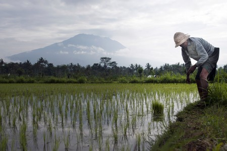 Mt. Agung eruption could be imminent: Agency