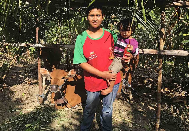 Ketut Dani, 25 and her daughter, Kadek Desy, 2, pose before their cows at the livestock shelter set up by Banjar Lebah community in Klungkung. Dani and her family left their home village Sebudi after Mt. Agung's alert status raised to the top level.