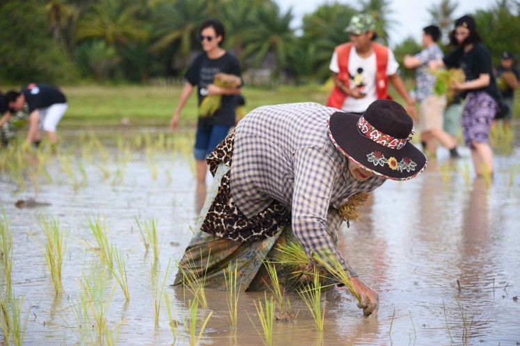 A resident of Koh Klang shows ASEAN journalists how to do rice farming.
