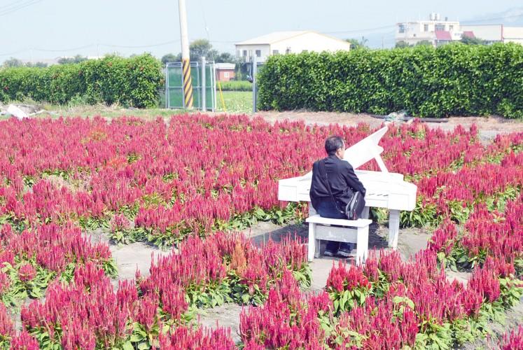Zhong She Guanguang Flower Market