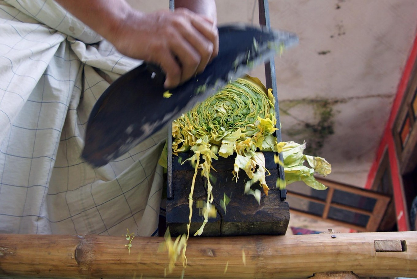 A worker uses a rudimentary blade and feeder to slice rolls of tobacco leaves into thin shreds. JP/Wahyoe Boediwardhana